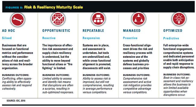 Maturity Scale